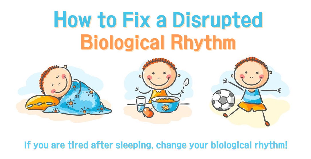 How to Fix a Disrupted Biological Rhythm?